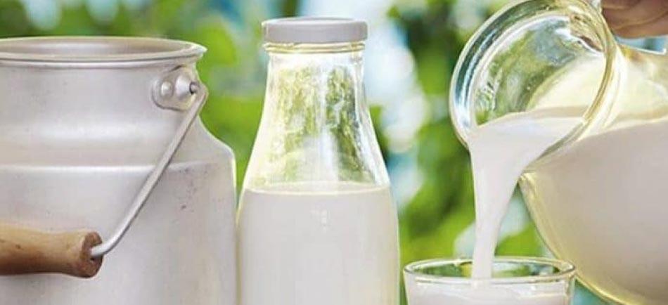 Süt ve Süt Ürünleri Üretiminde İş Sağlığı Güvenliği - Erataş İş Güvenliği Ekipmanları
