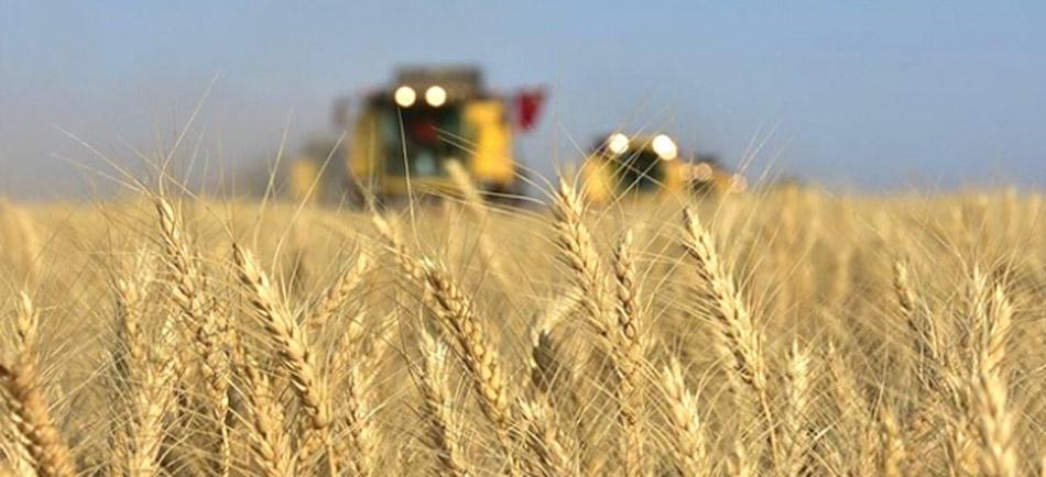 Tarım ve Doğal Kaynaklar İle İlgili Endüstrilerde İş Sağlığı Güvenliği - Erataş İş Güvenliği Ekipmanları